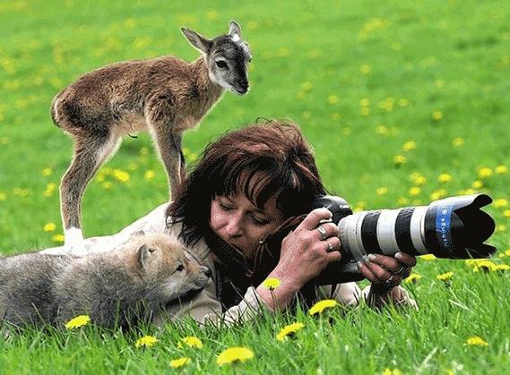 动物演员知道自己在演戏吗?