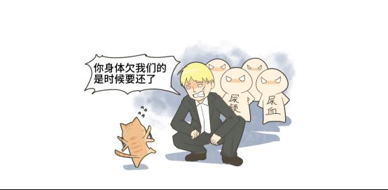 猫下泌尿道疾病