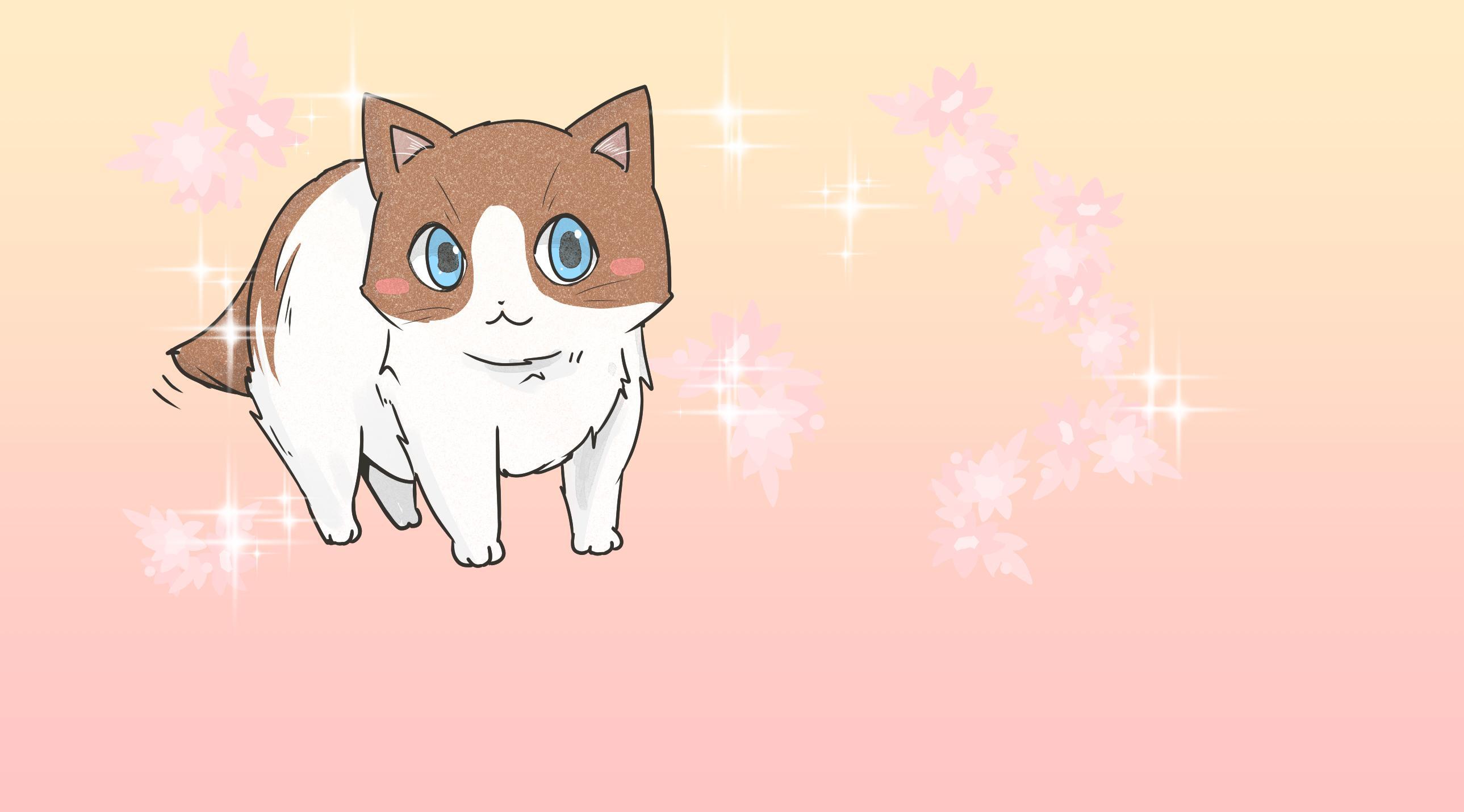 盛世美颜布偶猫,性格温顺的