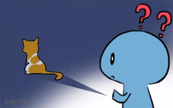 猫咪秘密知多少~第二弹!