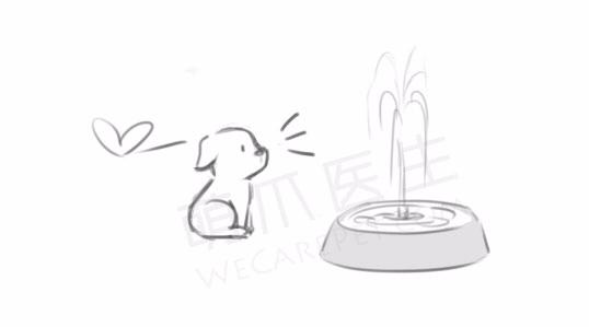 手绘简笔画狗狗