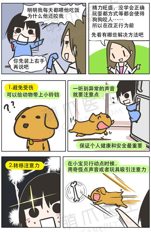 漫画 | 狗狗爱咬人怎么办?