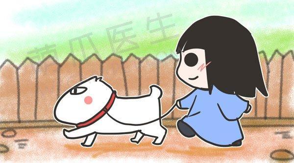 宠物关节炎