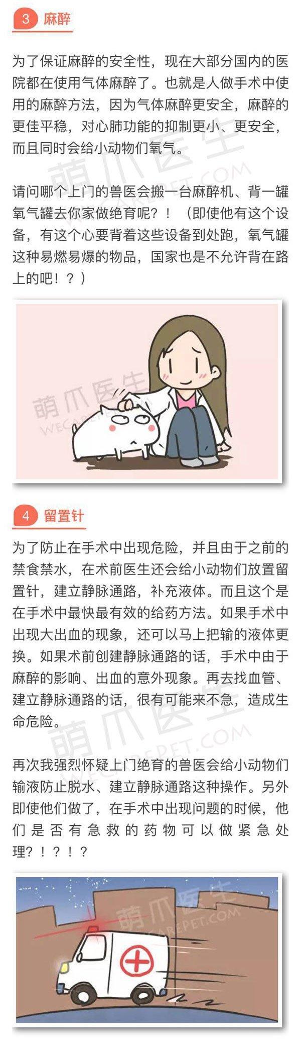 别让悲剧在你家宠物身上重演!请拒绝上门绝育!