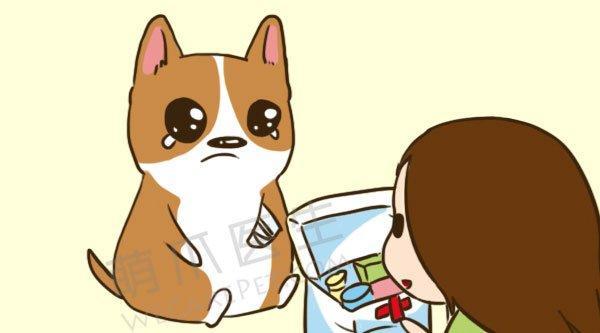 你的宠物急救箱(FirstAidKit)要包括哪些药品物品?