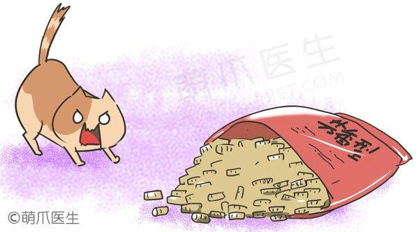 差评!破坏猫咪如厕体验的五大错误