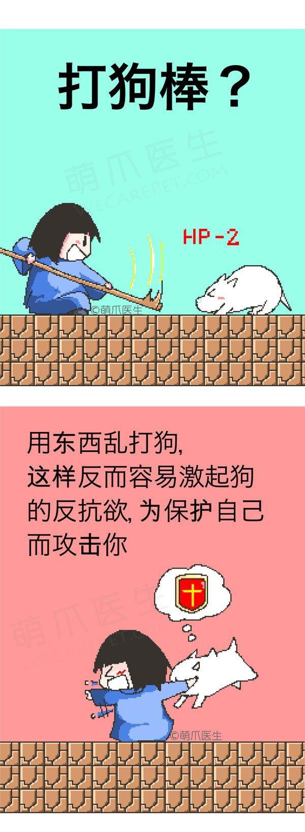 漫画 | 遭遇狗狗攻击,你该怎么办?!