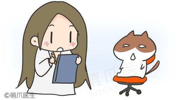 """猫咪""""感冒""""了?警惕猫上呼吸道感染!"""