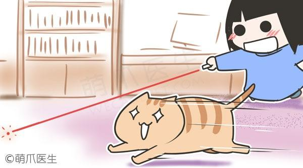 嗨起来!四款适合主人和猫互动的小游戏!