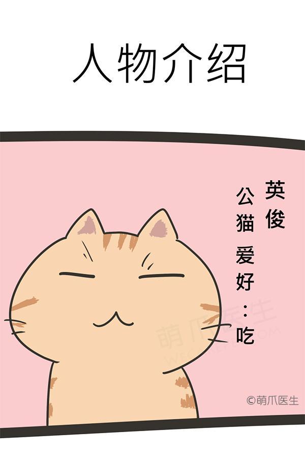 新番连载│第零话 新连载开始
