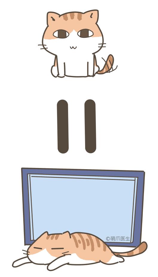 听说你有两台电脑,而且还养猫?