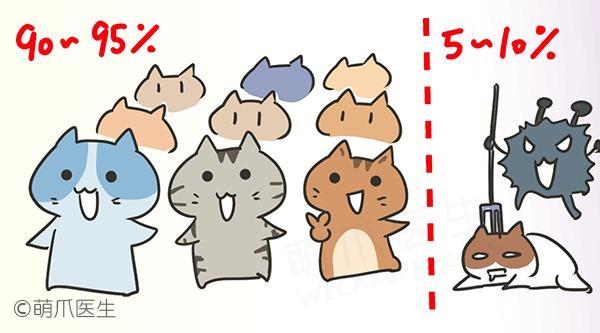 猫咪传腹(FIP): 魔鬼在敲门(上集)