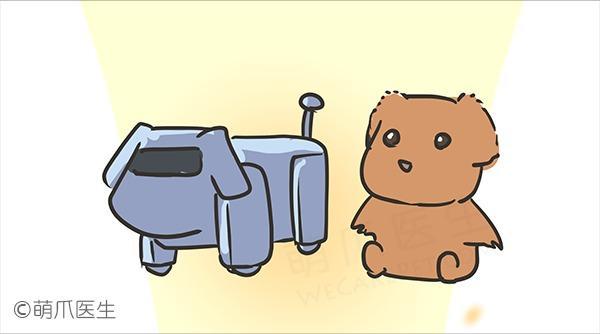 狗狗洗澡经验分享