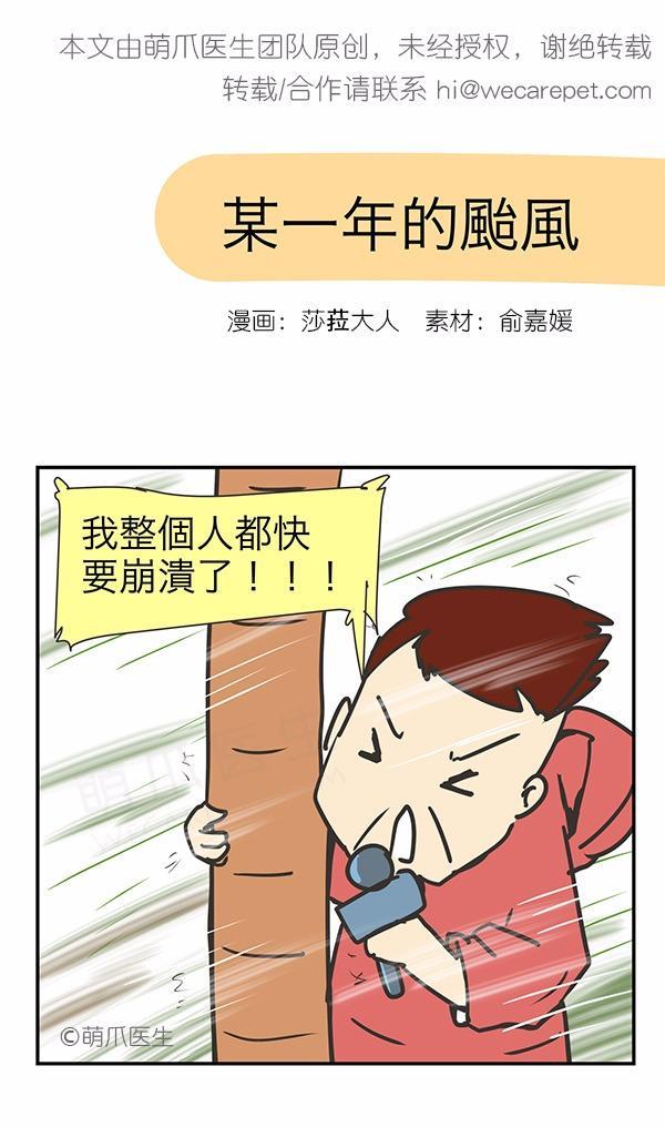 漫画|有次,我在台风天回家