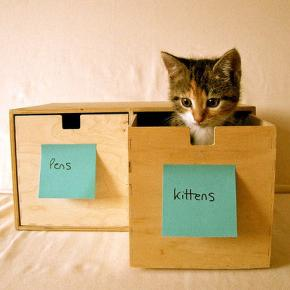 猫太多怎么办?手把手教你12种收纳大法