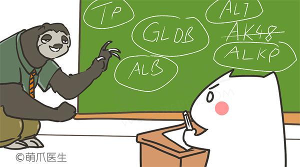 生化检查那些复杂的指标,都是什么意思?