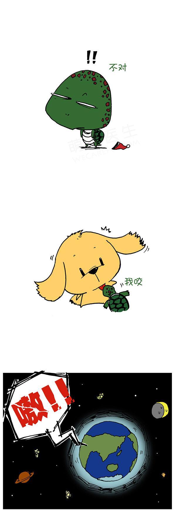 老妈的怪癖—乌龟和狗狗小插曲